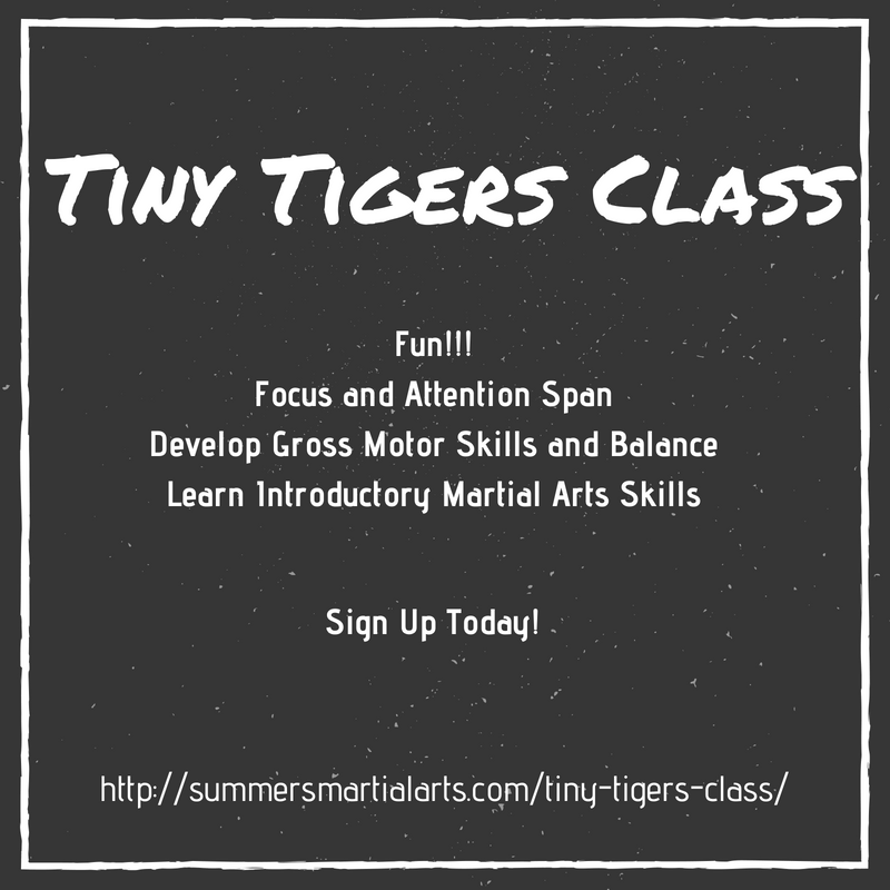 tiny tigers class, 3 year old, 4 year old, 5 year old, fun, gross motor skills, balance, attention span, introductory marital arts, focus