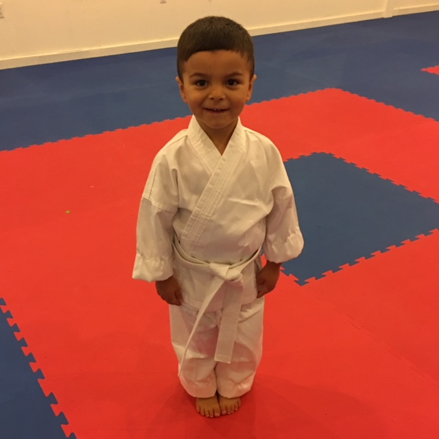 tiny tigers, toddler karate, karate, bellefonte, summers martial arts, terry summers, classes forming