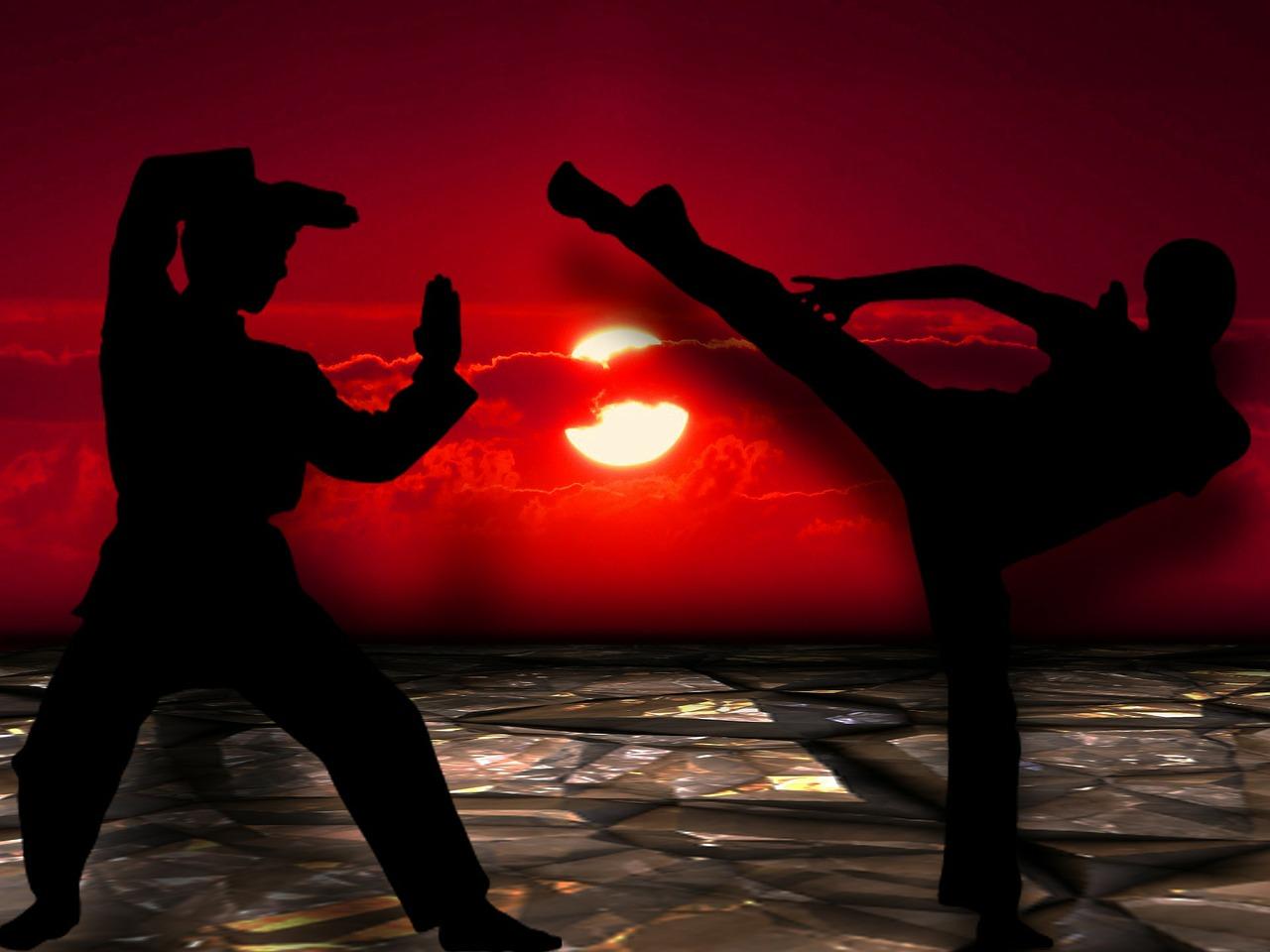https://pixabay.com/en/martial-arts-silhuetten-muay-thai-291049/